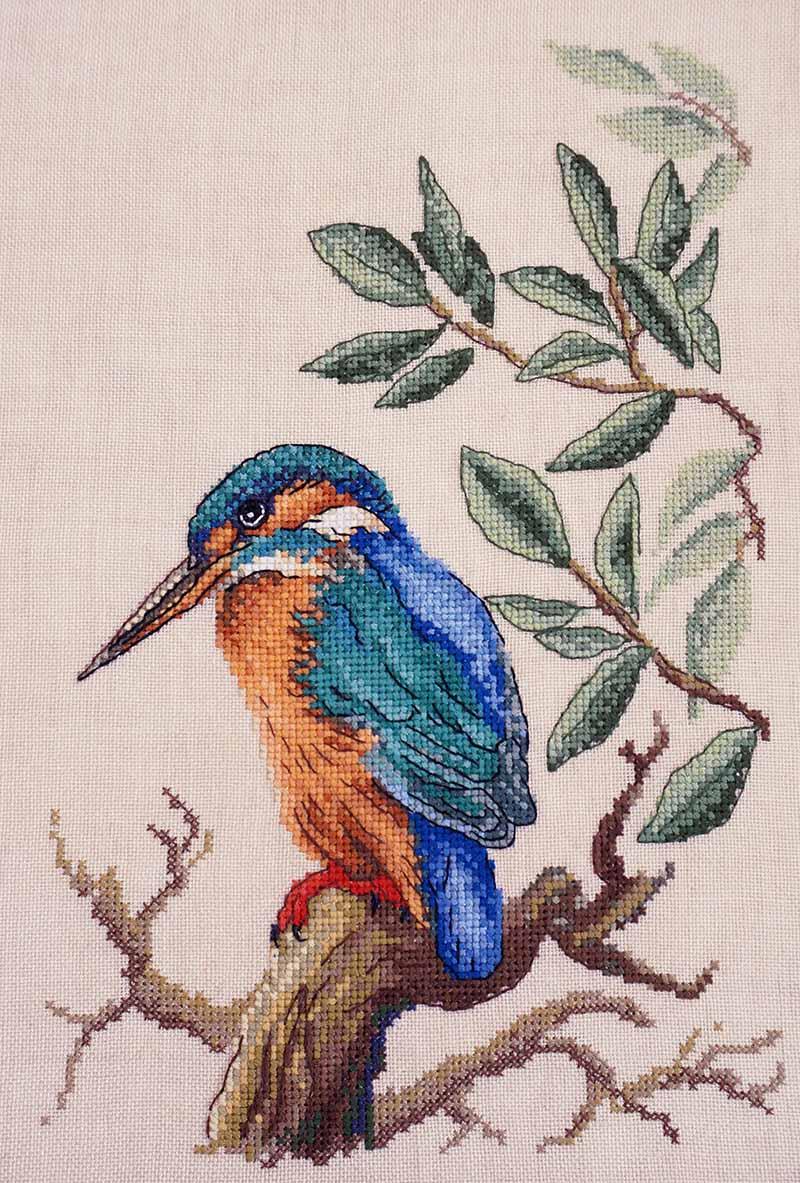 Зимородок вышивка крестом 62